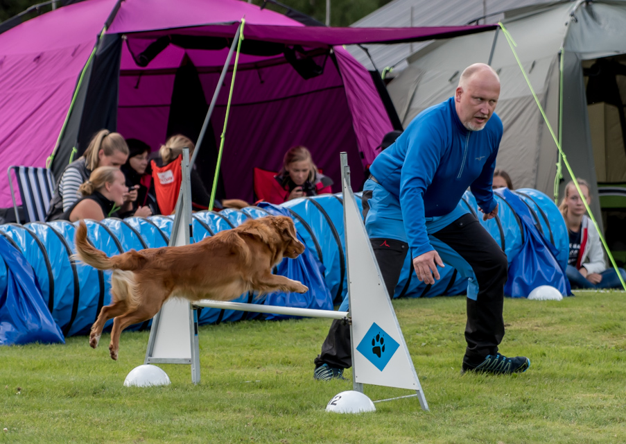 tollare-agility-14