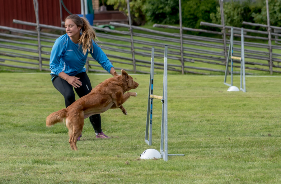 tollare-agility-150
