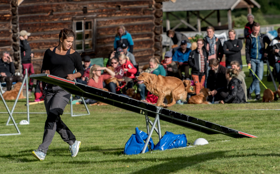 tollare-agility-171