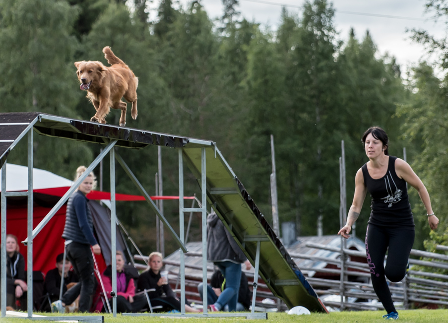 tollare-agility-193