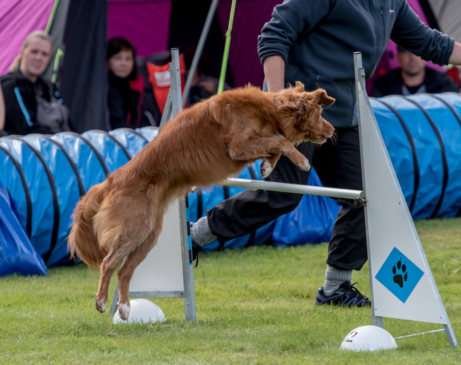 tollare-agility-90